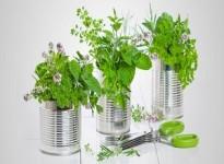Bioplastics - Nhựa sinh học là gì?