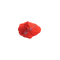 Red 170F5RK