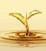 Chất phá bọt/chống tạo bọt gốc dầu khoáng trong chế biến thực phẩm EMULTROL DFM OLV-55 FG